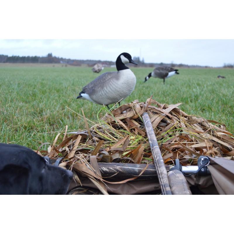 The Landing Zone Layout Blind Duckhouse Dk